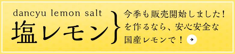 塩レモン レモン塩 レモンソルト用レモン販売開始