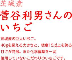 菅谷さんのいちご