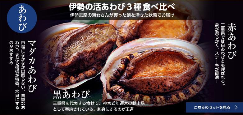 伊勢の活あわび3種食べ比べ【伊勢志摩の海女さんが獲った鮑を活きた状態でお届け】たっぷりと海藻のアラメを食んだあわびは絶品。活あわび3種(黒・マダカ・赤)が一度に揃う機会はなかなかありません。
