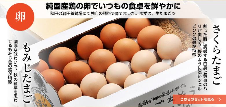 純国産鶏の卵でいつもの食卓を鮮やかに 秋田の瀧田養鶏場にて独自の飼料で育てました。まずは、生たまごで さくらたまごともみじたまご