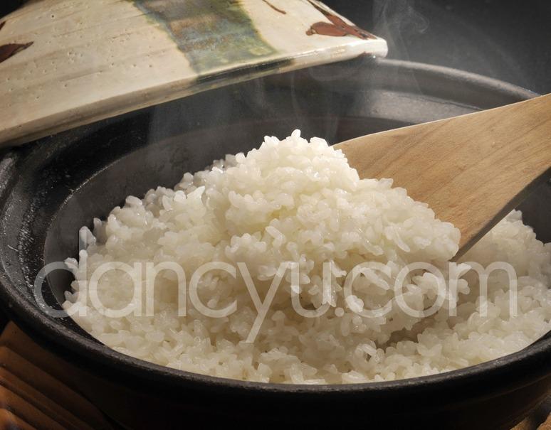有機JAS認証『須田さんたちのお米』由利本荘産 あきたこまち 5kg【玄米】【平成28年度産】の写真