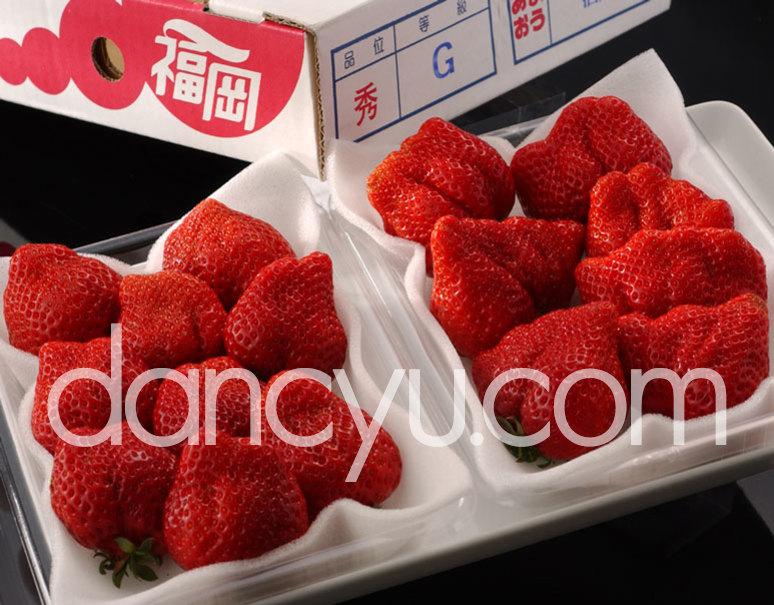 『あまおういちご』福岡県八女産 G(グランデ)約270g×2パック ※冷蔵の写真