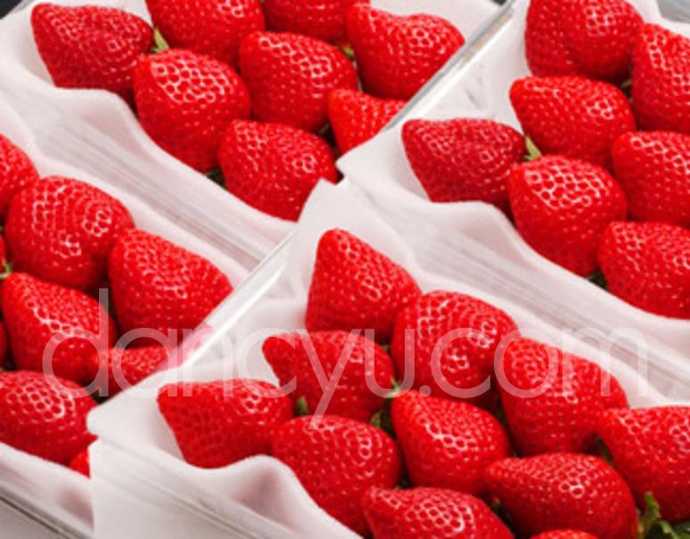 『あまおういちご』福岡県八女産 DX(デラックス)2箱セット 約270g×4パック ※冷蔵の写真