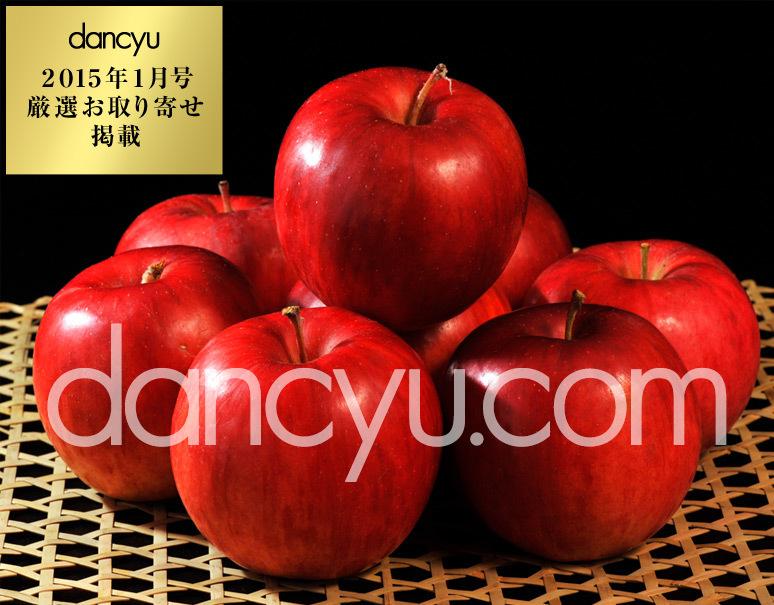 『百年の樹齢を重ねる昔ながらの紅玉』青森県産 2.5kg(12〜20玉)の写真
