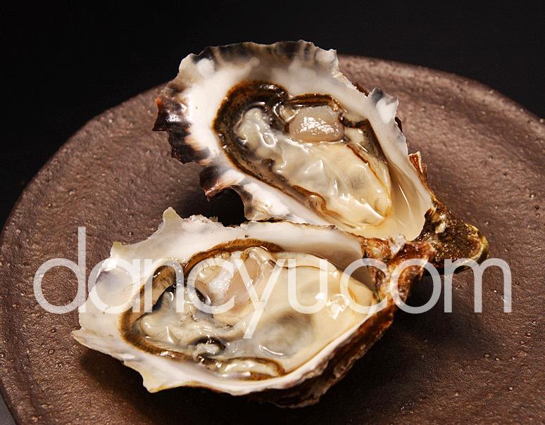 北海道厚岸産 幻の牡蠣『カキえもん』(Lサイズ殻付き12個入) ※冷蔵の写真