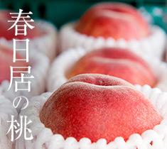 京の食通も手みやげにする、名店自家製の逸品 祇園にしむら 白板昆布鯖寿司『東山』