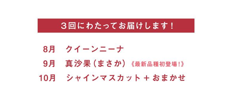 3回にわたってお届けします。8月 クイーンニーナ 9月 真沙果(まさか)最新品種初登場! 10月 シャインマスカット + おまかせ