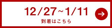 12/27〜1/11到着商品はこちら