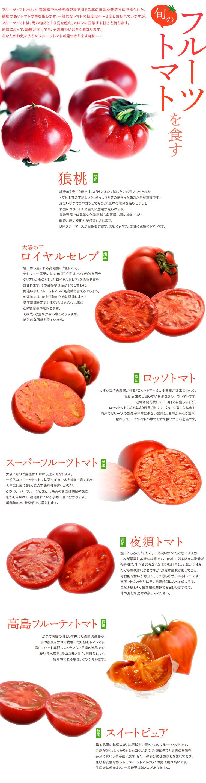 旬のフルーツトマトを食す
