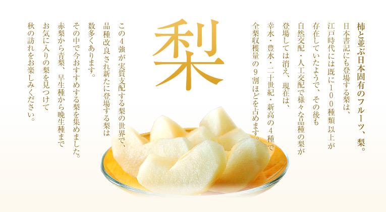 【梨特集】柿と並ぶ日本固有のフルーツ、梨。日本書記にも登場する梨は、江戸時代には既に100種類以上が存在していたようで、その後も自然交配・人工交配で様々な品種の梨が登場しては消え、現在は、幸水・豊水・二十世紀・新高の4種で全梨収穫量の9割ほどを占めます。この4強が実質支配する梨の世界で、品種改良され新たに登場する梨は数多くあります。その中で今おすすめする梨を集めました。赤梨から青梨、早生種から晩生種までお気に入りの梨を見つけて秋の訪れをお楽しみください。