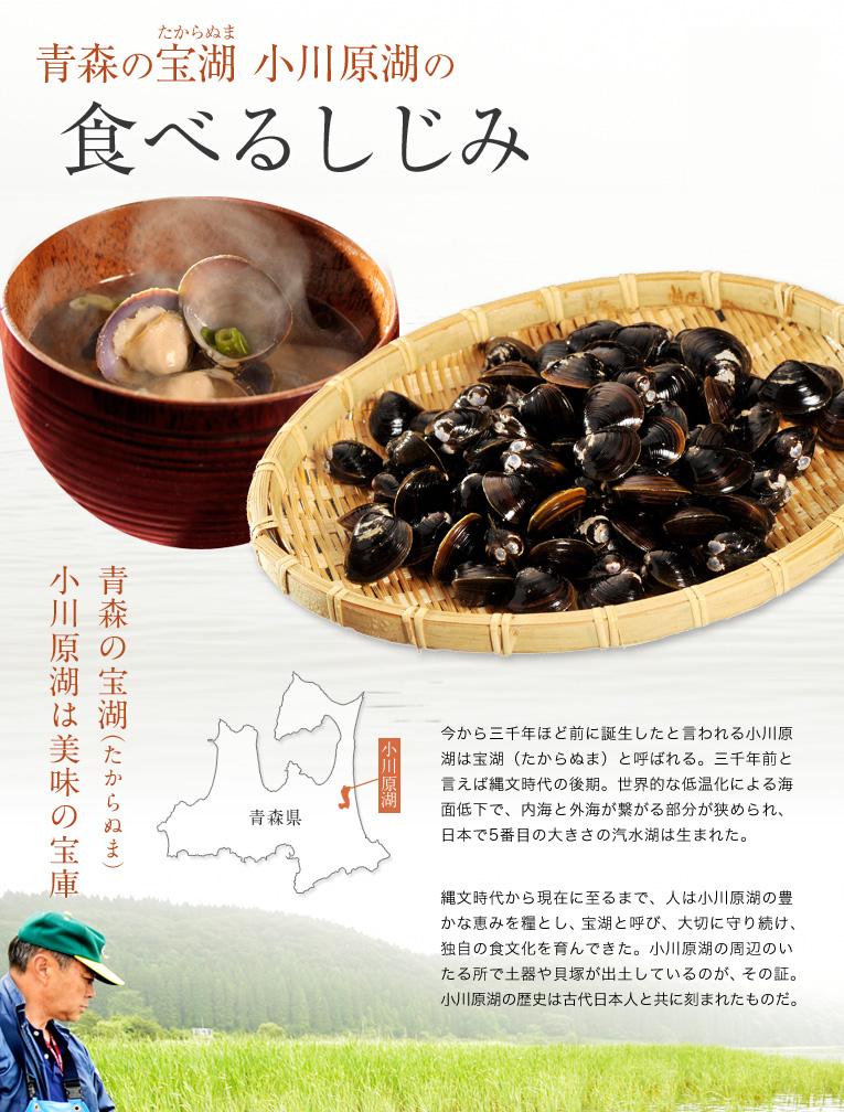 青森の宝沼 小川原湖の食べるしじみ!今から三千年ほど前に誕生したと言われる小川原湖は宝沼と呼ばれる。三千年前と言えば縄文時代の後期。世界的な低温化による海面低下で、内海と外海が繋がる部分が狭められ、日本で5番目の大きさの汽水湖は生まれた。縄文時代から現在に至るまで、人は小川原湖の豊かな恵みを糧とし、宝沼と呼び、大切に守り続け、独自の食文化を育んできた。小川原湖の周辺のいたる所で土器や貝塚が出土しているのが、その証。小川原湖の歴史は古代日本人と共に刻まれたものだ。