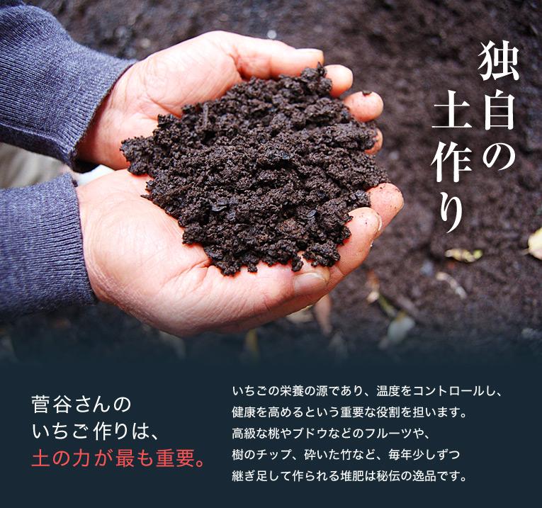 独自の土作り 菅谷さんのいちご作りは、土の力が最も重要。 いちごの栄養の源であり、温度をコントロールし、健康を高めるという重要な役割を担います。高級な桃やブドウなどのフルーツや、樹のチップ、砕いた竹など、毎年少しずつ 継ぎ足して作られる堆肥は秘伝の逸品です。