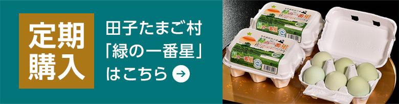 田子たまご村「緑の一番星」の定期購入はこちら