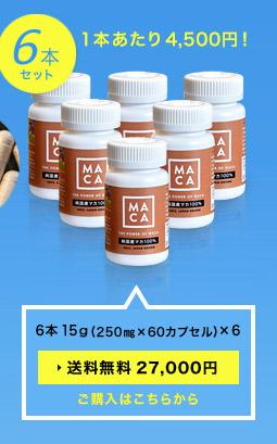 6本 (250㎎×60カプセル)×6「送料無料27,000円」1本あたり4,500円!