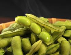 早生の走り「はねっ娘会」の枝豆は茶豆のような豊かな風味