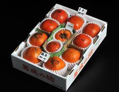 【一般入手困難】古都奈良に残る、世界最古の完全甘柿3種食べ比べ企画!