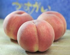 山梨の最高級ブランド「春日居の桃」特秀品を産地直送