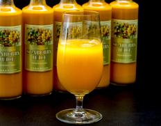 北海道産 シーベリー100%果汁