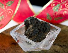 イタリアのトリュフ名産地 ノルチャからフレッシュ黒トリュフを輸入します!【締切11/28[火]10時】