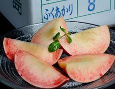 福島の菱沼農園から5品種桃リレーのご案内【先着30名様】