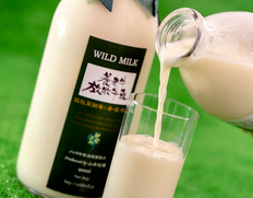 搾りたての味!完全放牧牛のノンホモパスチャライズミルク