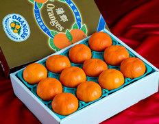 新品種柑橘「あすみ」を11箱限定で確保!